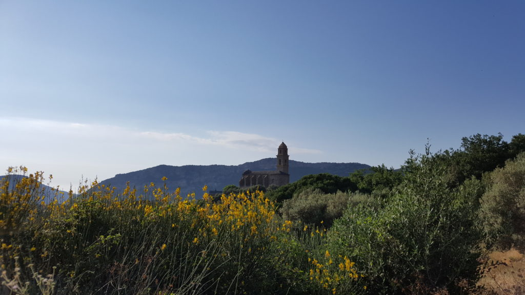 Patrimonio - Motorcycle touring in Corsica
